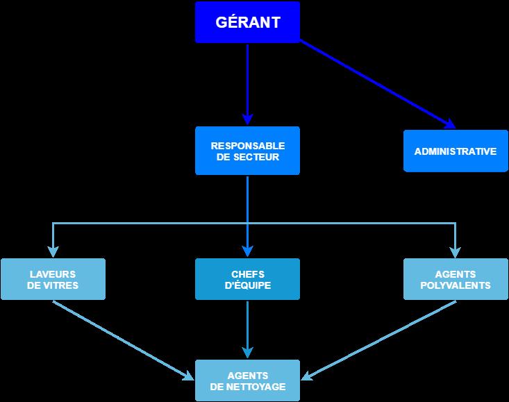 Organigramme simplifié de la hiérarchie de l'équipe Melko Nettoyage